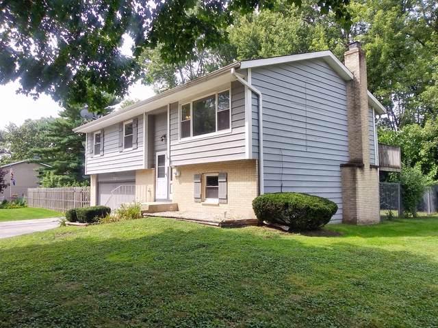720 Scott Street, Algonquin, IL 60102 (MLS #10477681) :: Ryan Dallas Real Estate