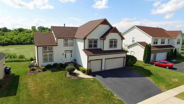 210 High Point Ridge, Algonquin, IL 60102 (MLS #10481557) :: Property Consultants Realty