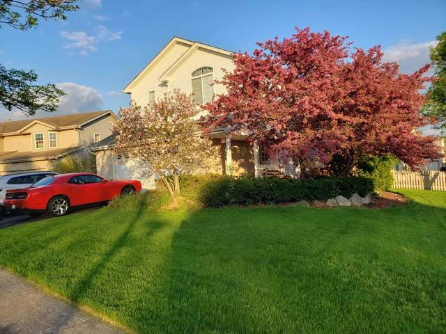 617 Coneflower Court, Romeoville, IL 60446 (MLS #10483643) :: The Wexler Group at Keller Williams Preferred Realty