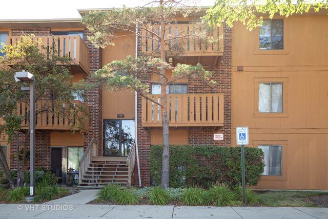 724 Rodenburg Road #103, Roselle, IL 60172 (MLS #10483972) :: The Wexler Group at Keller Williams Preferred Realty