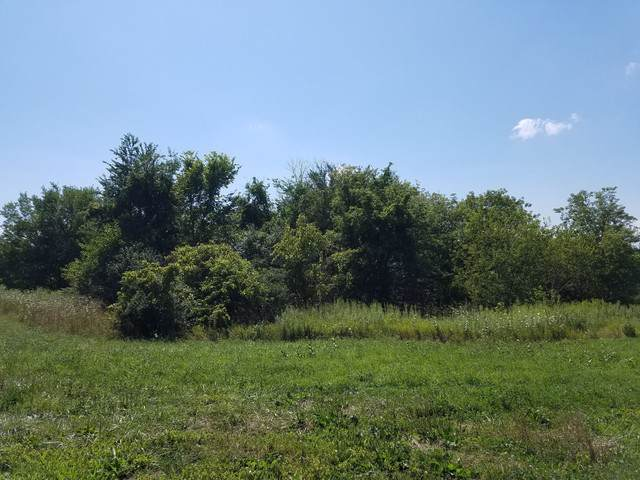 Lot 3 Country Club Road - Photo 1