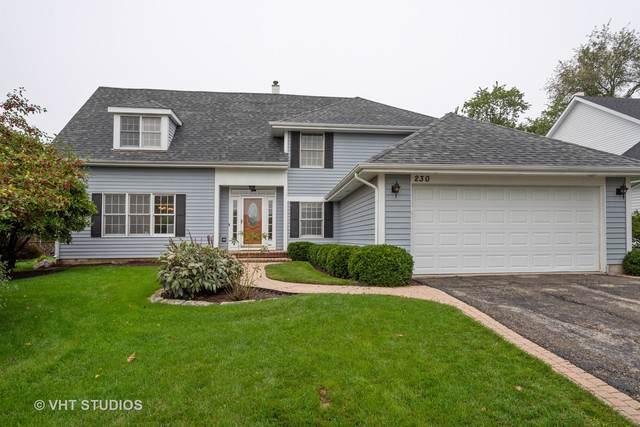 230 Southgate Drive, Vernon Hills, IL 60061 (MLS #10484779) :: Helen Oliveri Real Estate