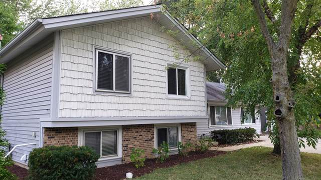 1300 Sea Biscuit Lane, Hanover Park, IL 60133 (MLS #10484951) :: Century 21 Affiliated
