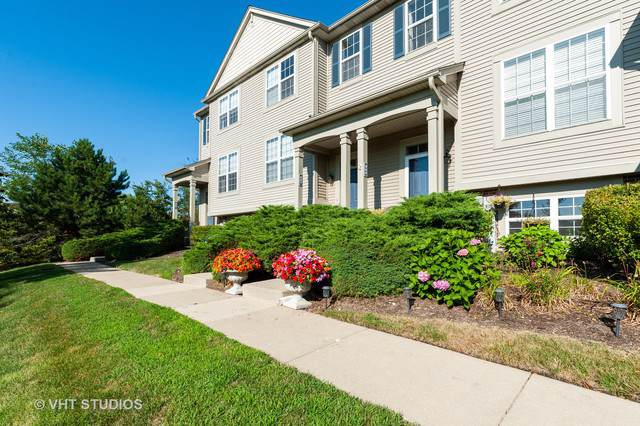 867 Cherry Creek Drive, Grayslake, IL 60030 (MLS #10485250) :: Property Consultants Realty