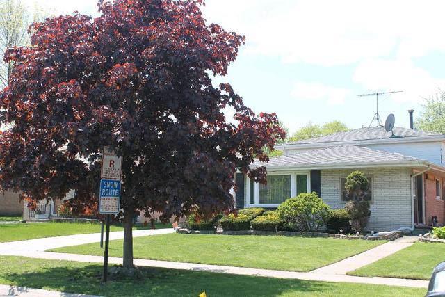 10804 S Massasoit Avenue, Chicago Ridge, IL 60415 (MLS #10485363) :: The Wexler Group at Keller Williams Preferred Realty