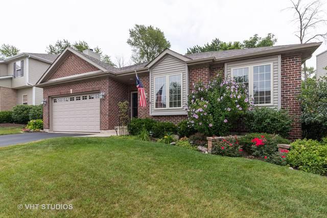38423 N Adam Street, Lake Villa, IL 60046 (MLS #10486217) :: Property Consultants Realty