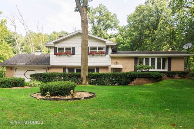 176 E Forest Lane, Palatine, IL 60067 (MLS #10486322) :: The Wexler Group at Keller Williams Preferred Realty
