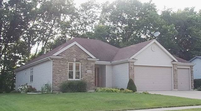 1341 Coral Berry Court, Yorkville, IL 60560 (MLS #10487092) :: Property Consultants Realty