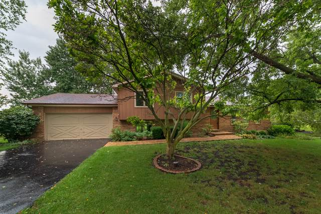 5N030 W Mary Drive, St. Charles, IL 60175 (MLS #10488165) :: Ani Real Estate