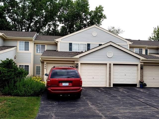 484 E Fawn Lane, Palatine, IL 60074 (MLS #10488463) :: Baz Realty Network | Keller Williams Elite
