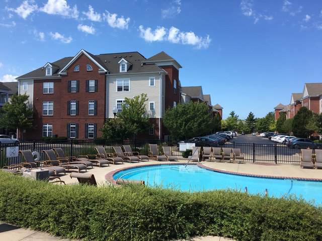 1903 N Lincoln Avenue N #307, Urbana, IL 61801 (MLS #10491374) :: Ryan Dallas Real Estate
