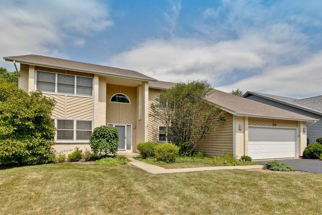 520 Newtown Drive, Buffalo Grove, IL 60089 (MLS #10491380) :: The Perotti Group | Compass Real Estate