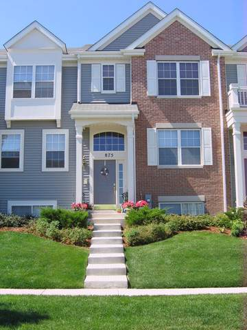 875 Clover Lane, Pingree Grove, IL 60140 (MLS #10491396) :: Property Consultants Realty