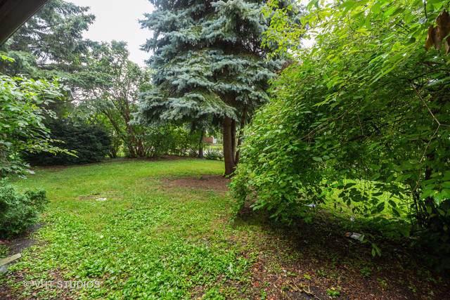 885 S Warrington Road, Des Plaines, IL 60016 (MLS #10492272) :: Berkshire Hathaway HomeServices Snyder Real Estate