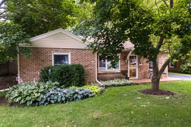 109 School Street, Grayslake, IL 60030 (MLS #10492383) :: John Lyons Real Estate