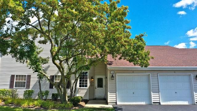 106 Gant Circle D, Streamwood, IL 60107 (MLS #10494646) :: Ani Real Estate