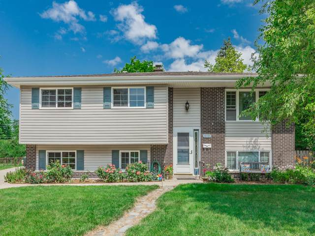 430 Scott Court, Roselle, IL 60172 (MLS #10505851) :: Baz Realty Network | Keller Williams Elite
