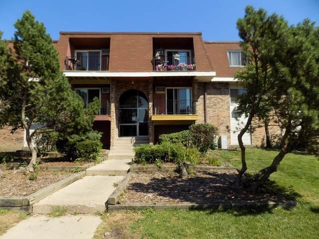 1065 Valley Lane 8-207, Hoffman Estates, IL 60169 (MLS #10507675) :: Lewke Partners