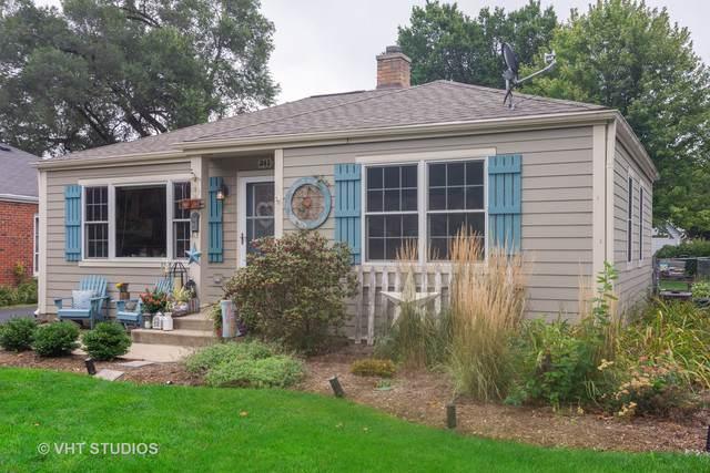 341 N Schiller Street, Palatine, IL 60067 (MLS #10516322) :: Ani Real Estate
