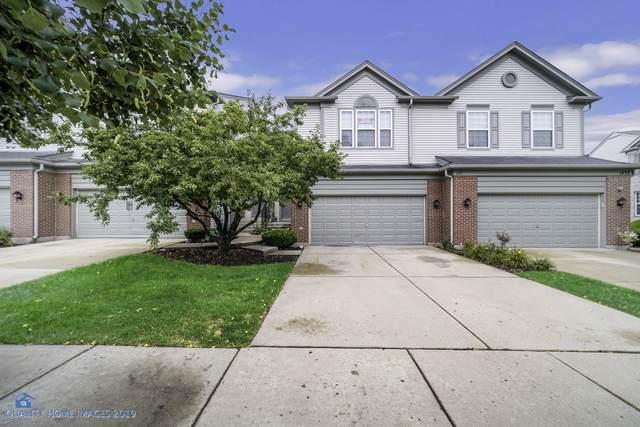 1435 Yellowstone Drive, Streamwood, IL 60107 (MLS #10516338) :: Ani Real Estate