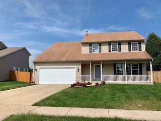 5419 Meadowbrook Street, Plainfield, IL 60586 (MLS #10516956) :: The Wexler Group at Keller Williams Preferred Realty