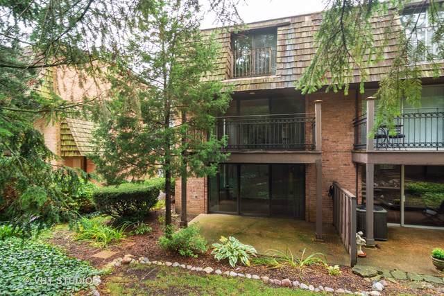 446 Lageschulte Street 1-446, Barrington, IL 60010 (MLS #10517584) :: Angela Walker Homes Real Estate Group