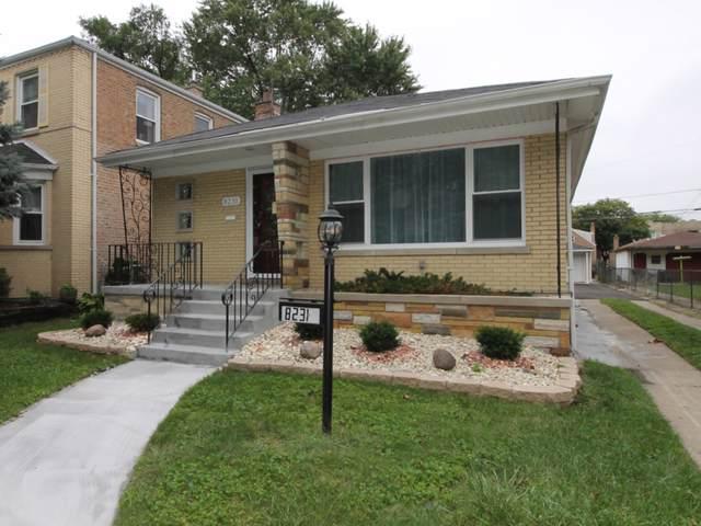 8231 S Michigan Avenue, Chicago, IL 60619 (MLS #10520308) :: Ani Real Estate