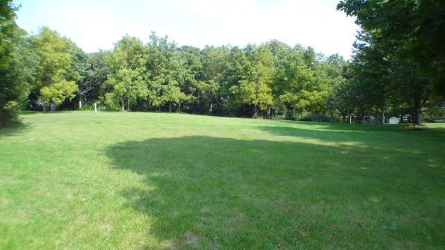 Lot 3 Constance Lane, Marengo, IL 60152 (MLS #10524588) :: Property Consultants Realty
