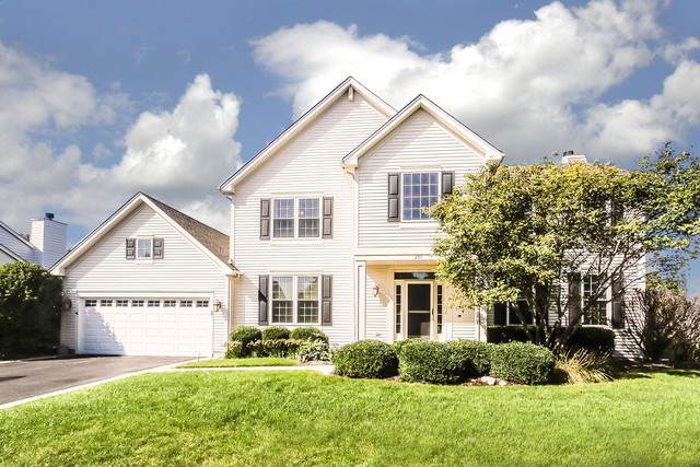 250 Summerdale Lane, Algonquin, IL 60102 (MLS #10527491) :: Angela Walker Homes Real Estate Group