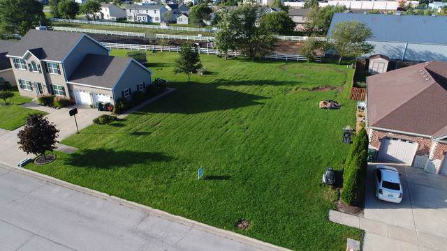 1060 Regent Court, Diamond, IL 60416 (MLS #10534730) :: Property Consultants Realty