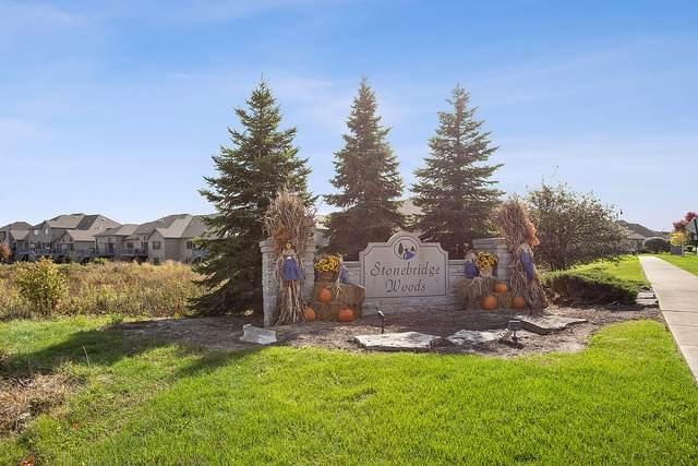 16219 Ohla Farm Way, Homer Glen, IL 60491 (MLS #10549460) :: Angela Walker Homes Real Estate Group