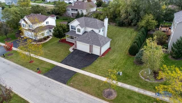 11204 Thrush Creek Drive, Richmond, IL 60071 (MLS #10550165) :: Property Consultants Realty