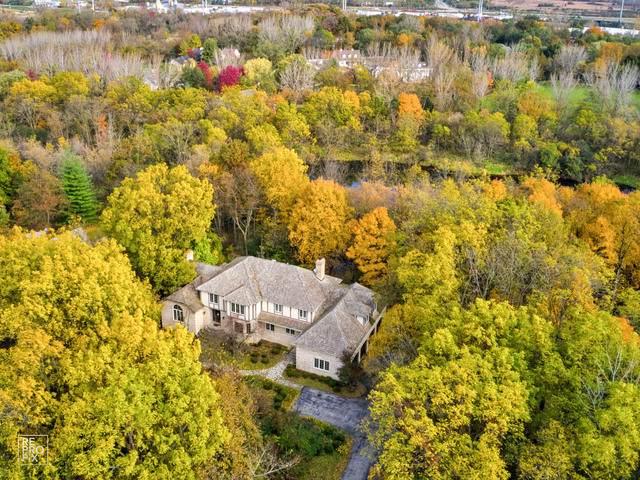 33W512 Brewster Creek Circle, Wayne, IL 60184 (MLS #10558795) :: Baz Realty Network | Keller Williams Elite