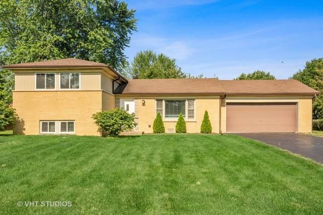 502 S Busse Road, Mount Prospect, IL 60056 (MLS #10564919) :: Helen Oliveri Real Estate