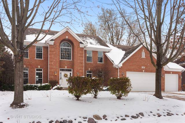 385 N Chalary Court, Palatine, IL 60067 (MLS #10564955) :: The Dena Furlow Team - Keller Williams Realty
