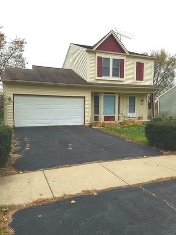 1128 Crimson Court, Naperville, IL 60564 (MLS #10567143) :: Ryan Dallas Real Estate