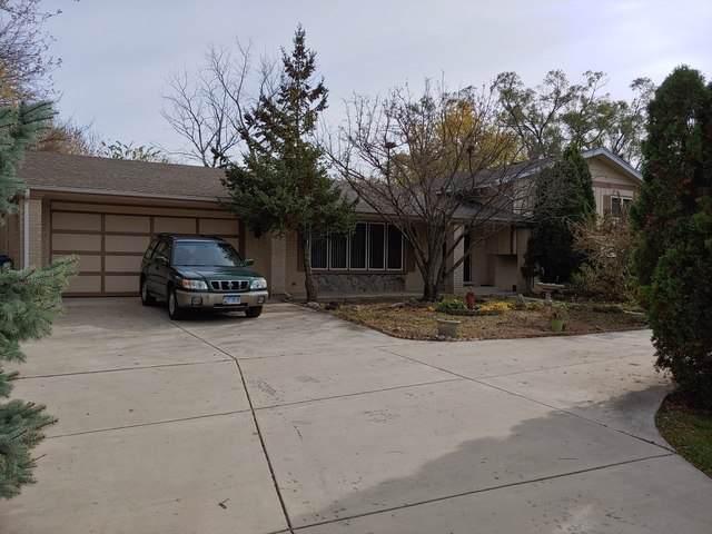 9947 S 88th Avenue, Palos Hills, IL 60465 (MLS #10567741) :: Baz Realty Network | Keller Williams Elite