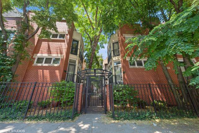 1842 N Halsted Street #1, Chicago, IL 60614 (MLS #10569568) :: John Lyons Real Estate