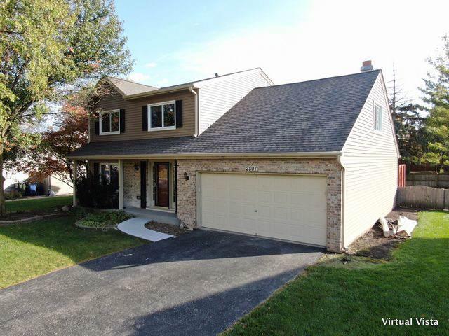 2807 Springdale Circle, Naperville, IL 60564 (MLS #10569924) :: Ryan Dallas Real Estate