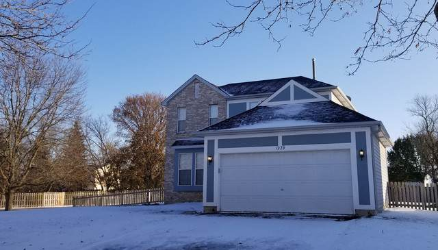 1229 Hackberry Court, Elgin, IL 60120 (MLS #10572438) :: John Lyons Real Estate