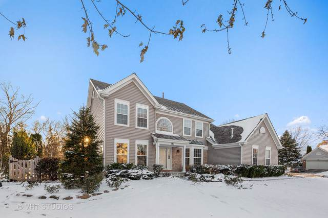 191 Wellington Court, Grayslake, IL 60030 (MLS #10572990) :: Property Consultants Realty