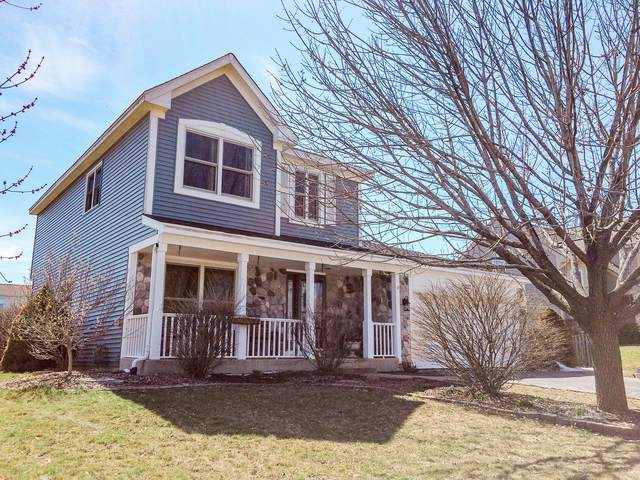 233 Winddance Drive, Lake Villa, IL 60046 (MLS #10573993) :: Property Consultants Realty
