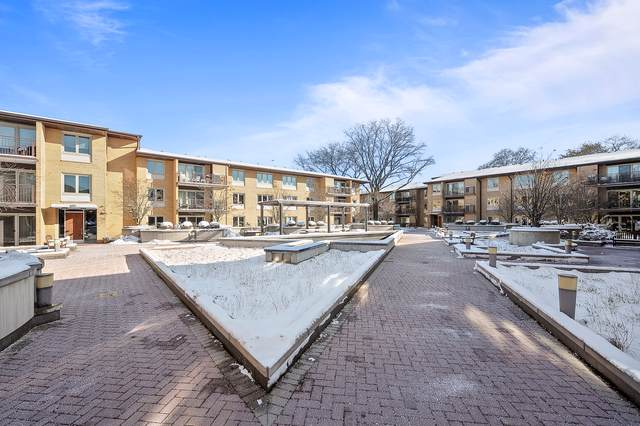 2420 W Talcott Road #215, Park Ridge, IL 60068 (MLS #10574200) :: Property Consultants Realty