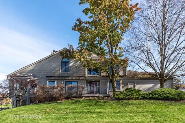 126 Waterview Court, Lake Barrington, IL 60010 (MLS #10574733) :: Ani Real Estate