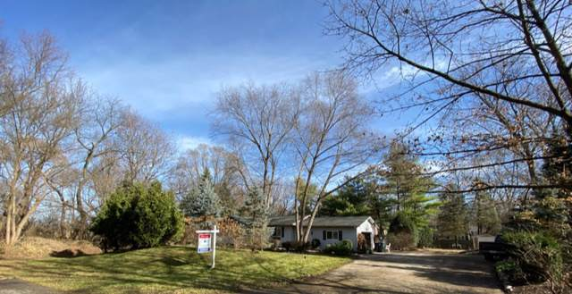 10108 Kenilworth Avenue, Algonquin, IL 60102 (MLS #10574966) :: Ryan Dallas Real Estate