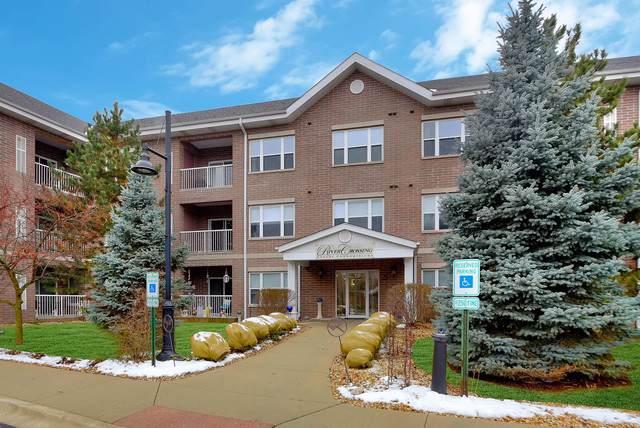10 N Gilbert Street #115, South Elgin, IL 60177 (MLS #10576863) :: Helen Oliveri Real Estate