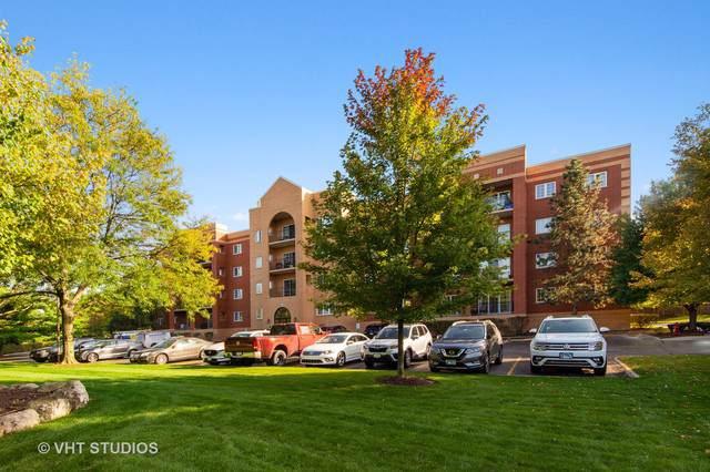59 S Hale Street #310, Palatine, IL 60067 (MLS #10578787) :: Helen Oliveri Real Estate