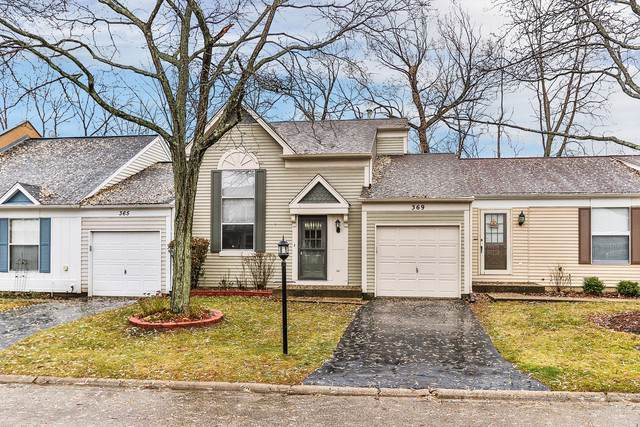 369 W Tanglewood Avenue, Palatine, IL 60067 (MLS #10579490) :: Ani Real Estate
