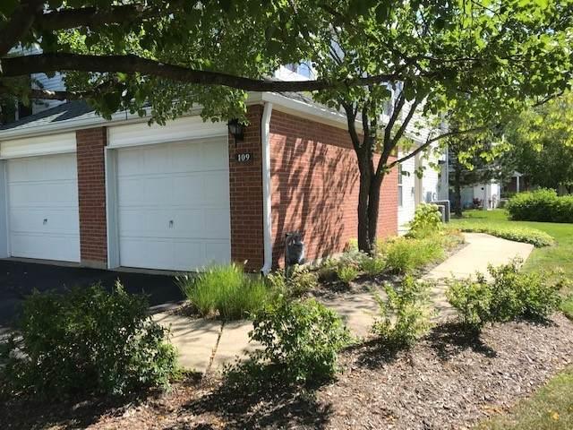 109 Meadowbrook Lane 44A, Lake Bluff, IL 60044 (MLS #10581634) :: John Lyons Real Estate