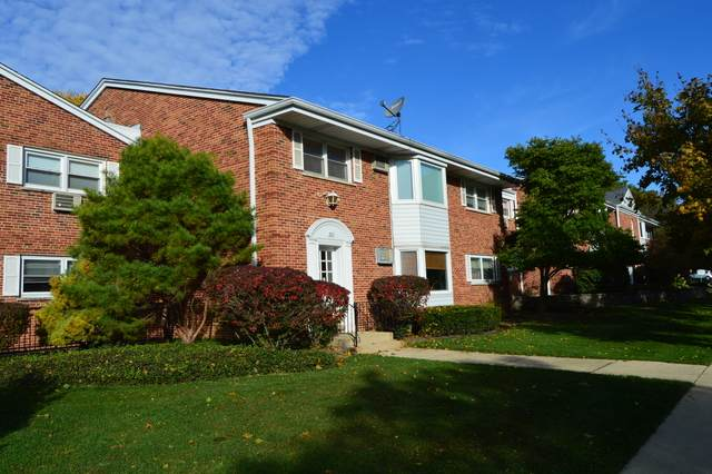 206 N Somerset Lane 2F, Arlington Heights, IL 60005 (MLS #10585331) :: The Wexler Group at Keller Williams Preferred Realty